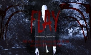 Movie Poster Flay