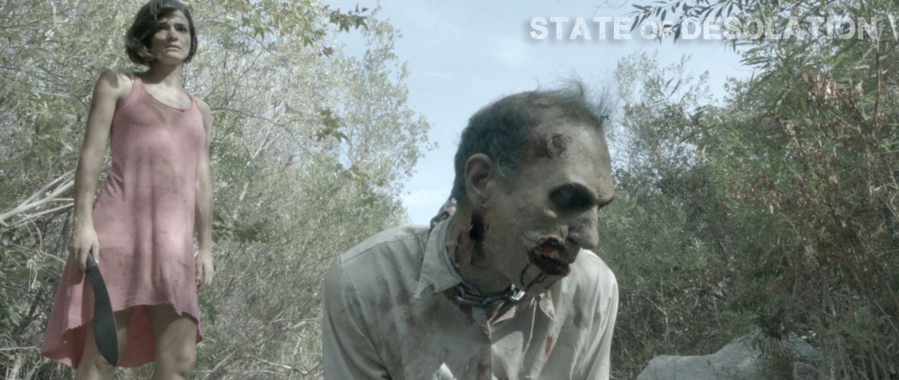 Images from STATE OF DESOLATION